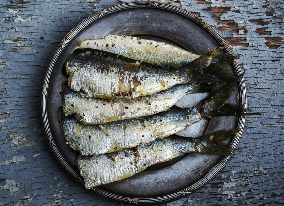 Pisces Seafood Fish